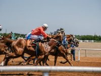All about Horse Racing